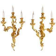 Pair of Louis XV Style Wall Sconces in Gilt Bronze, circa 1880