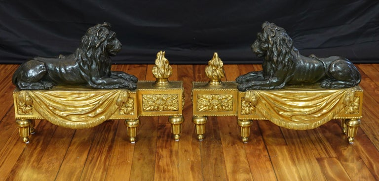 Pair of French Louis XVI style gilt and patinated bronze chenets or andirons featuring a reclining lion resting on a base with a flame, and ornamented with a fringed drapery, tassels, pearl beading, rosettes and other neoclassical details.  Each