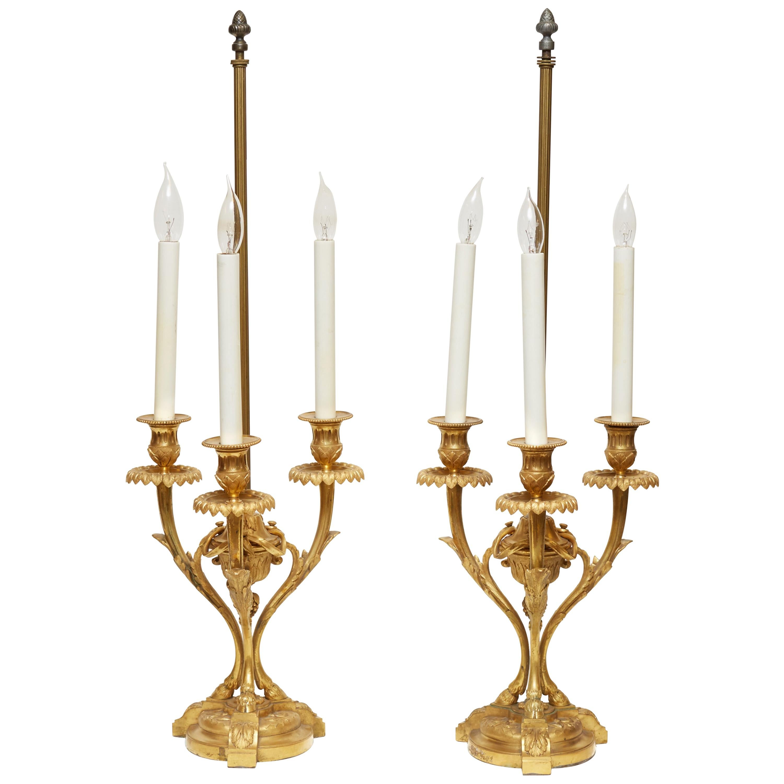 Pair of Louis XVI Style Gilt Bronze Candelabra Lamps