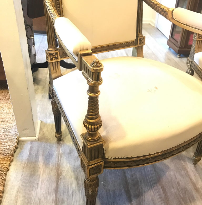 20th Century Pair of Louis XVI Style Giltwood Chairs