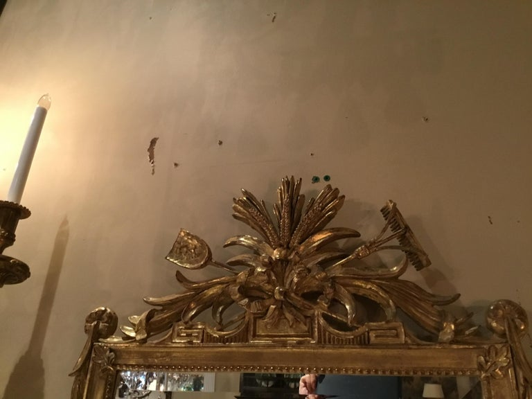 Pair of Louis XVI Style Giltwood Mirrors, 20th Century In Good Condition For Sale In Houston, TX