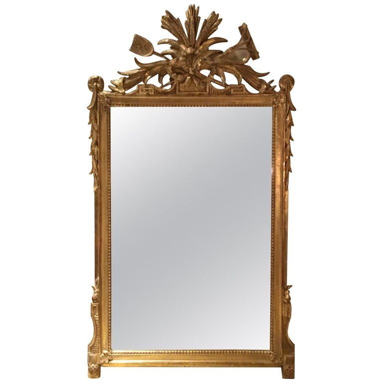 Pair of Louis XVI Style Giltwood Mirrors, 20th Century For Sale