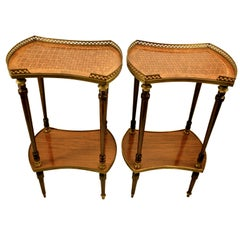 Pair of Louis XVI Style Marquetry Side Tables