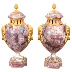 Pair of Louis XVI Style Urns