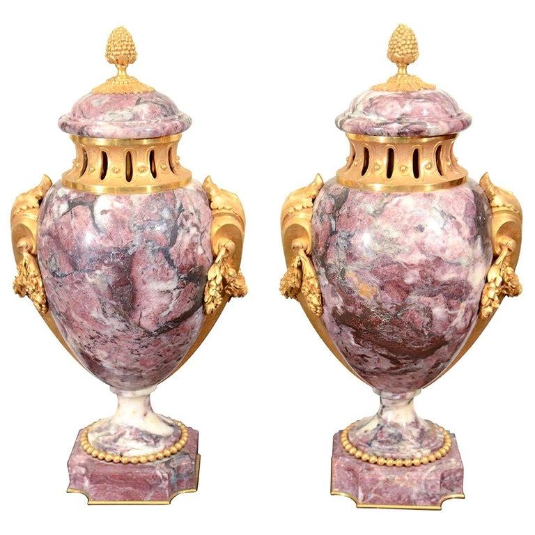 Pair of Louis XVI Style Urns For Sale
