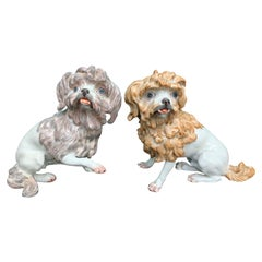 Pair of Meissen Porcelain Figures of Bolognese Hounds, Marked, circa 1947-1973