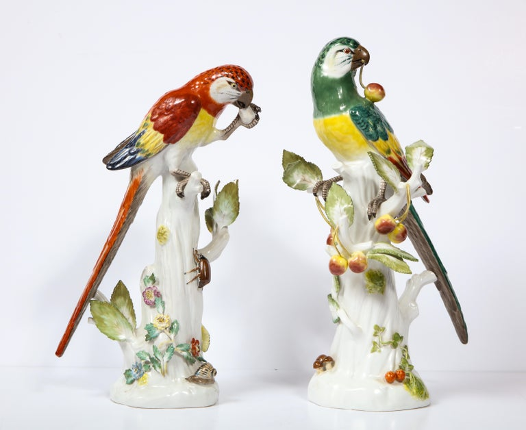 A fine pair of antique Meissen Porcelain figures of colorful parrots, each standing on a tree branch after a model by J. J. Kandler. One parrot is eating fruit while the other parrot bearing beautiful leaves on its branches is glaring into the