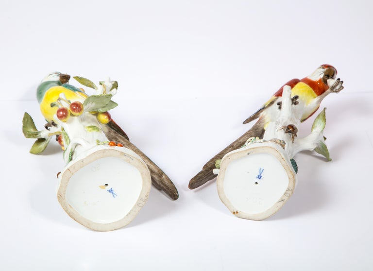 Pair of Meissen Porcelain Figures of Parrots with Cherries, Insects and Flowers For Sale 13