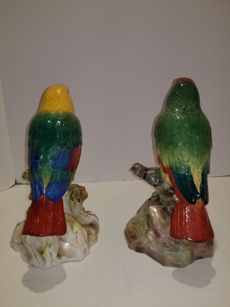 Pair of Meissen Porcelain Models of Parrots For Sale 6