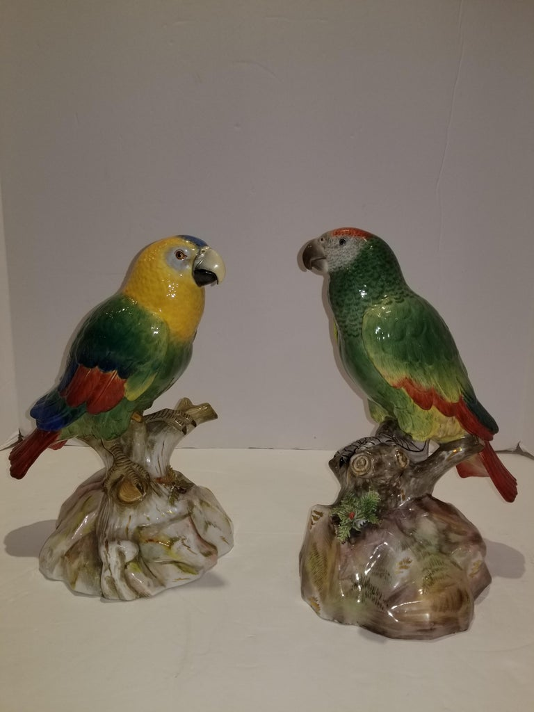 Pair of Meissen Porcelain models of parrots. Each naturalistically modeled perched on a tree-stump and rockwork base enriched in gilt. Impeccable quality, very finely hand carved and engraved and exquisitely hand-painted in polychrome colors,