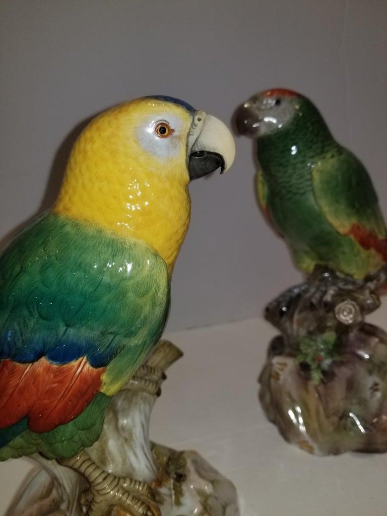 19th Century Pair of Meissen Porcelain Models of Parrots For Sale