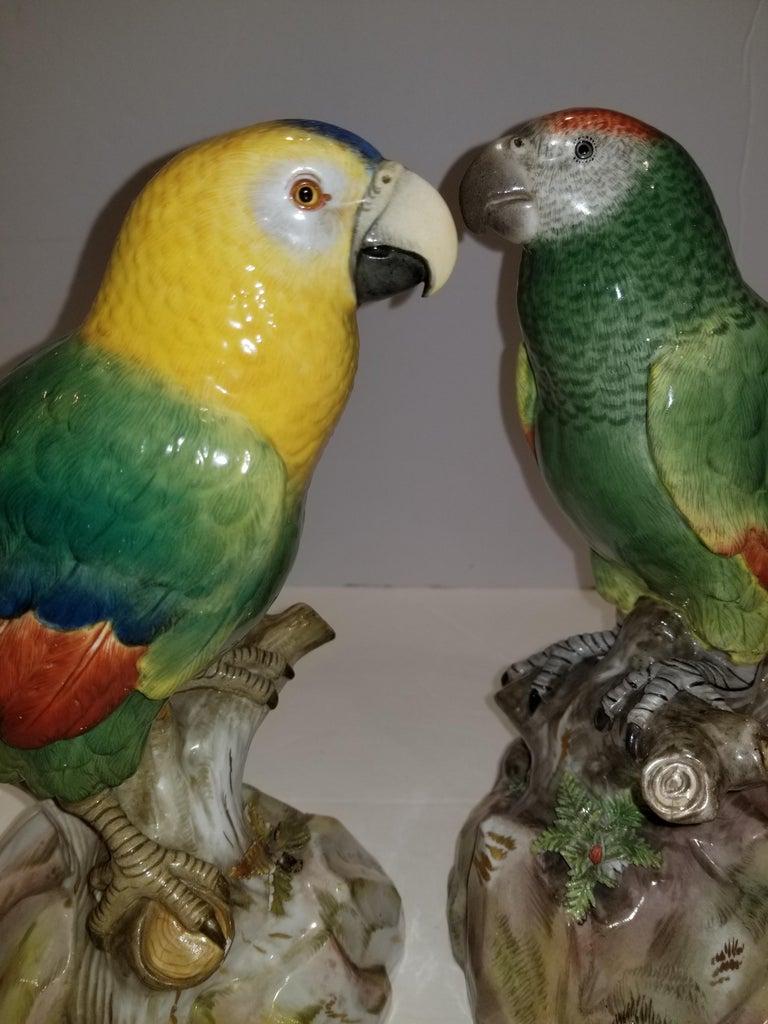 Pair of Meissen Porcelain Models of Parrots For Sale 2