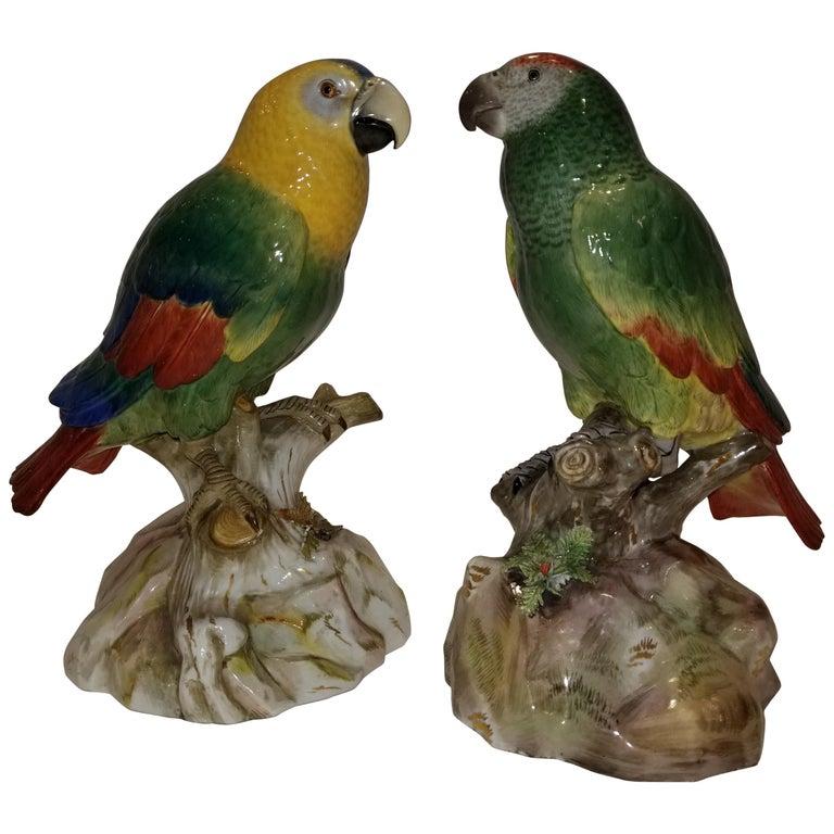 Pair of Meissen Porcelain Models of Parrots For Sale