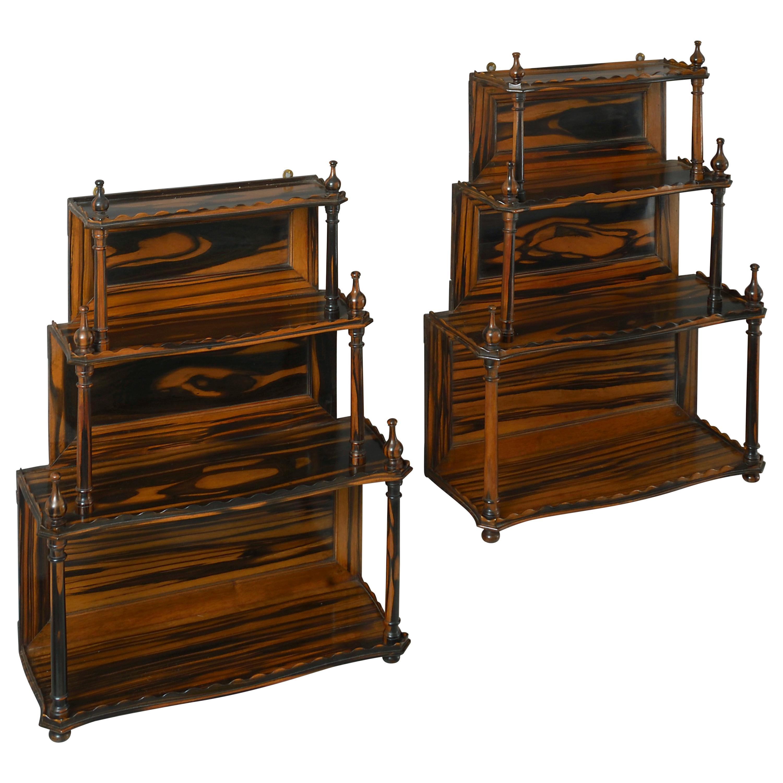 Pair of Mid-19th Century Calamander Wood Hanging Shelves