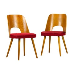 Pair of Mid Century Dining Chairs by Oswald Haerdtl for Ton, 1950s