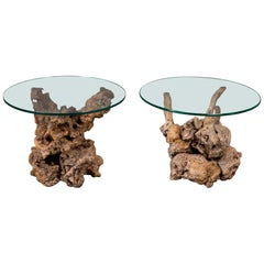 Pair of Midcentury Root Tables