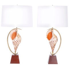 Pair of Midcentury Triton Shell Table Lamps
