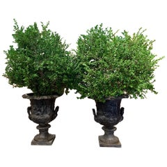 Pair of Midcentury French Carved Lead Outdoor Medicis Planters