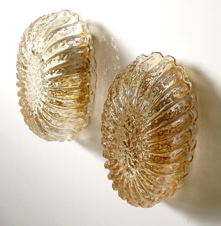 Pair of Midcentury Limburg Flower Floral Glass Vanity Mirror Sconces, 1960s For Sale 3