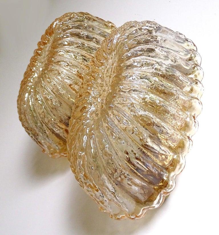 Metal Pair of Midcentury Limburg Flower Floral Glass Vanity Mirror Sconces, 1960s For Sale