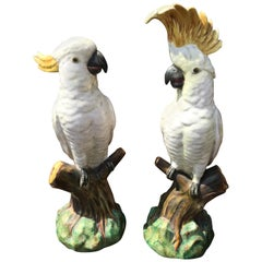 Pair of Minton 'Attributed' Majolica White Cockatoo