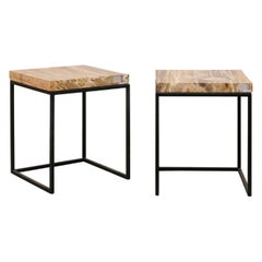 Pair of Modern Designed Side Tables with Petrified Wood Tops on Iron Bases