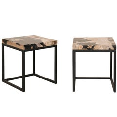 Pair of Modern Style Polished Petrified Wood Drink Tables with Iron Bases