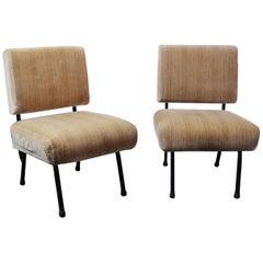 Pair of Modernist Armchairs, in Soft Velvet Fabric, 1950s