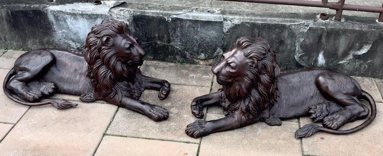 Pair of monumental bronze recumbent lions, each one finely detailed in resting pose.