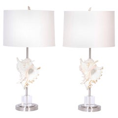 Pair of Murex Shell Table Lamps