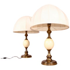 Pair of Ostrich Egg and Brass Table Lamp