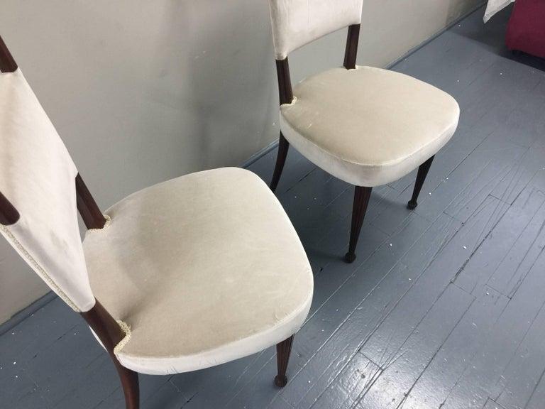 20th Century Osvaldo Borsani Chairs, Italy, 1950, new Velvet, Rosewood For Sale