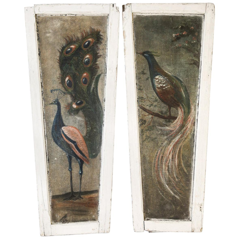 Pair of Painted Peacock  Panels
