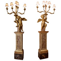 Pair of Palatial Scale 18 Century 5-Light Rococo Giltwood Cherub Torcheres