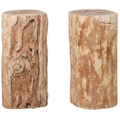 Pair of Petrified Wood Drink Side Tables with Polished Tops