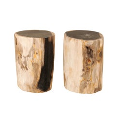 Pair of Petrified Wood Drinks Tables 'or Stools', Black and Tan Colored