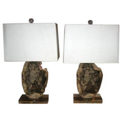 Pair of  Petrified Wood Lamps on Acrylic Bases with Shades