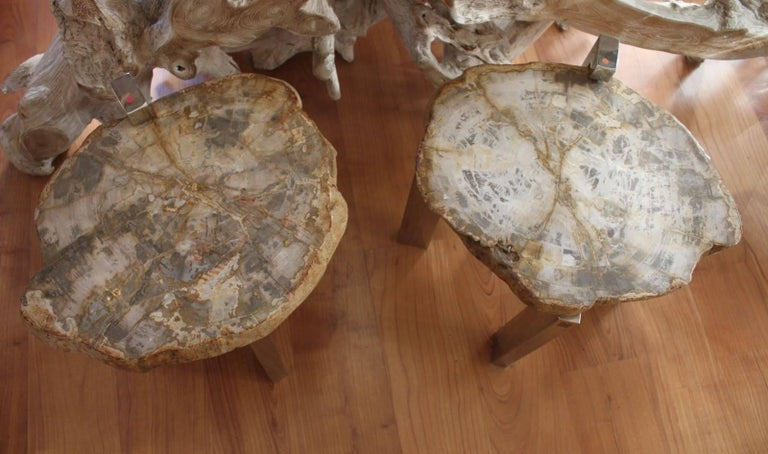 Elegant pair of side tables made in petrified wood (25 Million years). Color beige. Dimensions: Height 41cm, diameter 45cm.