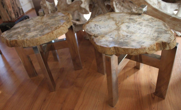French Pair of Petrified Wood Side Tables For Sale