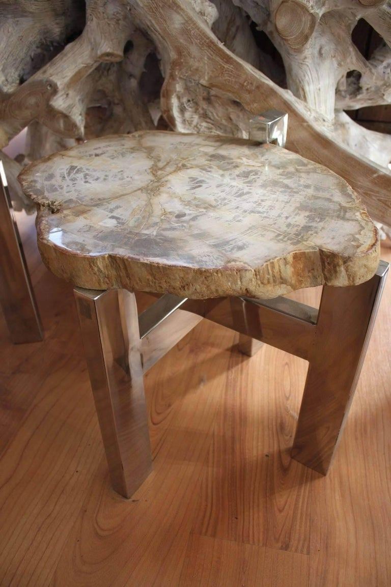Pair of Petrified Wood Side Tables In Excellent Condition For Sale In Paris, FR