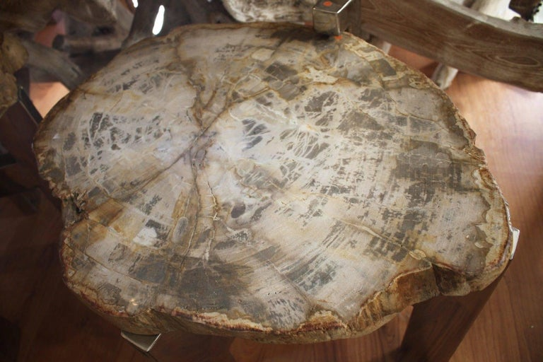 Contemporary Pair of Petrified Wood Side Tables For Sale