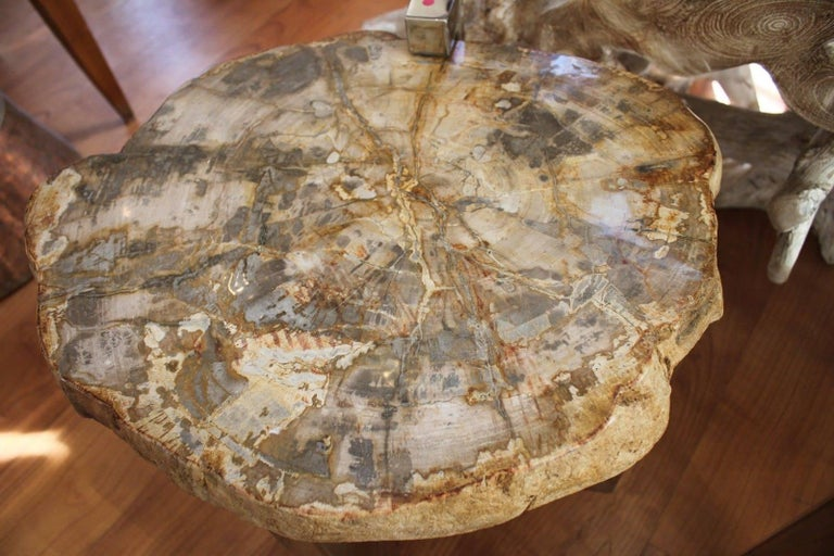 Pair of Petrified Wood Side Tables For Sale 1