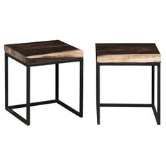 Pair of Petrified Wood Top Side Tables on Custom Iron Bases, Charcoal/Beige Tops