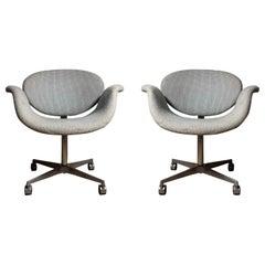 Pair of Pierre Paulin Swivel Little Tulip chairs on Castors
