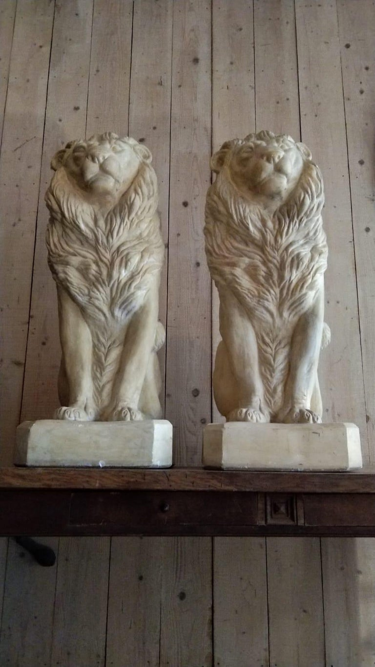 Pair of Plaster Seated Lions, circa 1960 In Good Condition For Sale In Lectoure, Occitanie