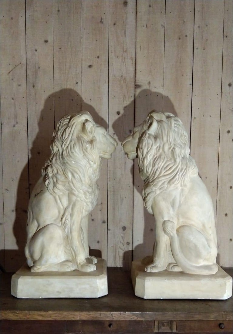 Pair of Plaster Seated Lions, circa 1960 For Sale 1