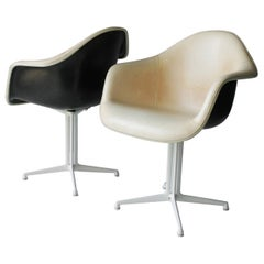 Pair of Plastic DAL Armchairs by Charles and Ray Eames for Herman Miller