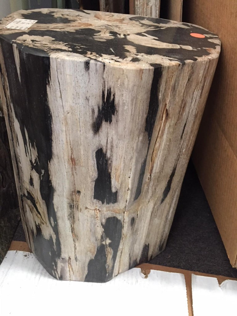 Pair of Polished Petrified Wood Side Tables In Good Condition For Sale In Cypress, CA