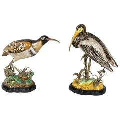 Pair of Porcelain Figures of Birds