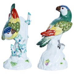 Pair of Porcelain Parrots Signed Meissen, Germany, Early 20th Century